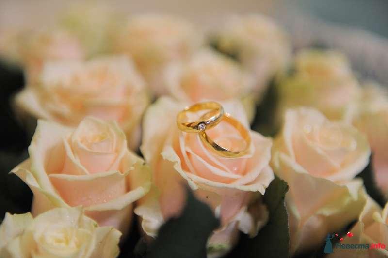 Золотые обручальные кольца, выполненные в классическом стиле с бриллиантом на кольце невесты, на фоне розовых роз. - фото 118914 Anita