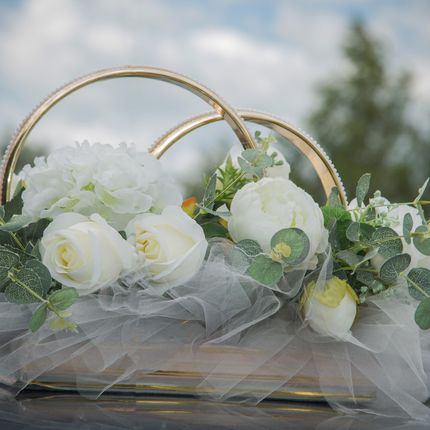 Проведение свадьбы + дискотека