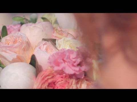 Свадебное видео 28.07.2017